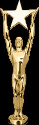 Tommie Award Winner